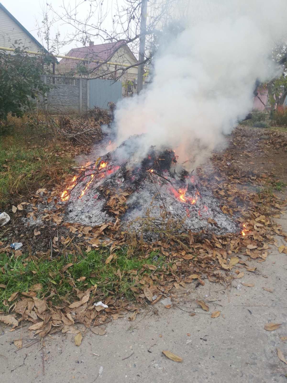 Жительница Мелитополя заплатит штраф за сжигание листвы, фото-2