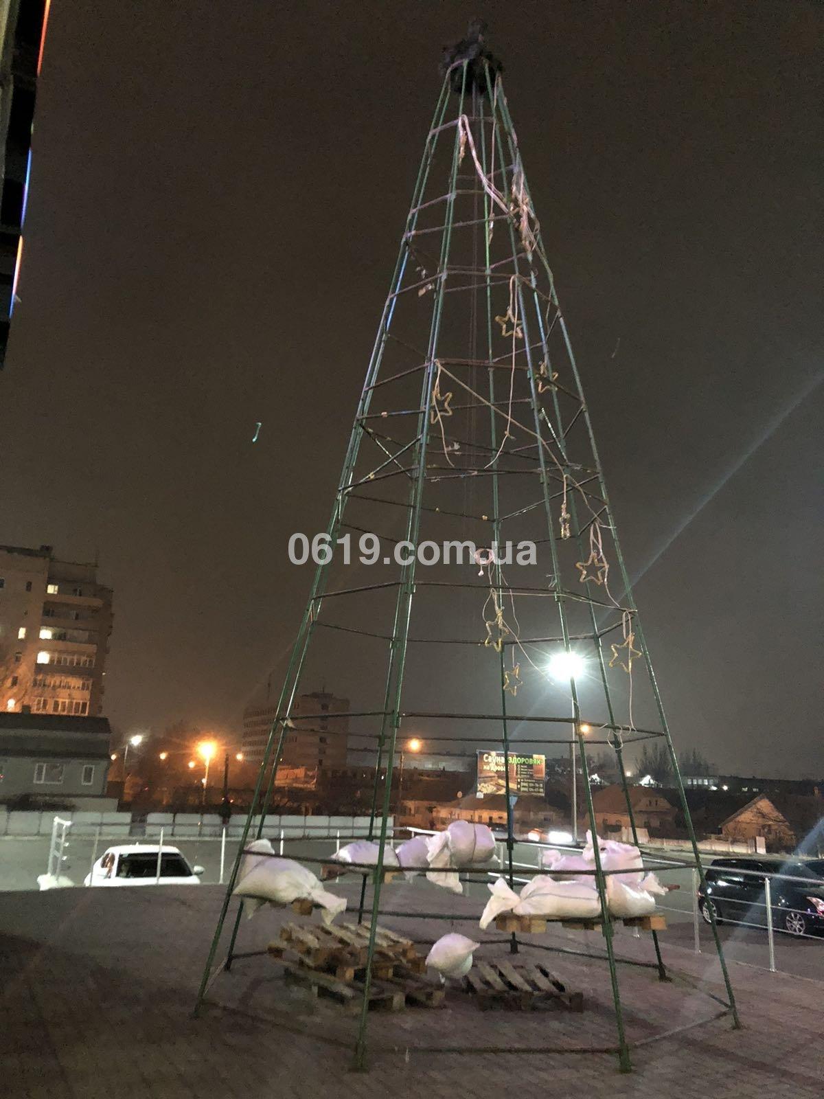 В Мелитополе начали устанавливать первую новогоднюю елку, - ФОТО, фото-1