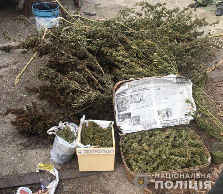 У жителя Кирилловки полицейские изъяли три килограмма каннабиса, - ФОТО, фото-1