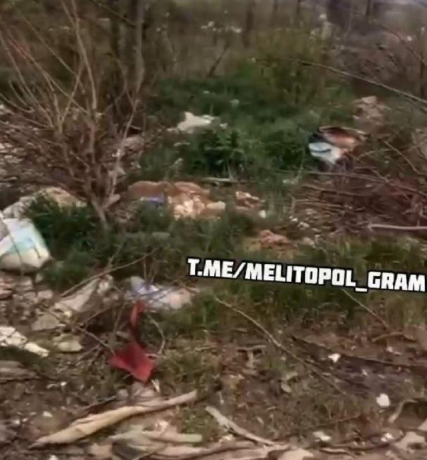 Мелітопольський лісопарк знов завалили сміттям, фото-2