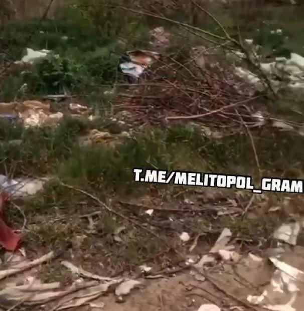 Мелітопольський лісопарк знов завалили сміттям, фото-1
