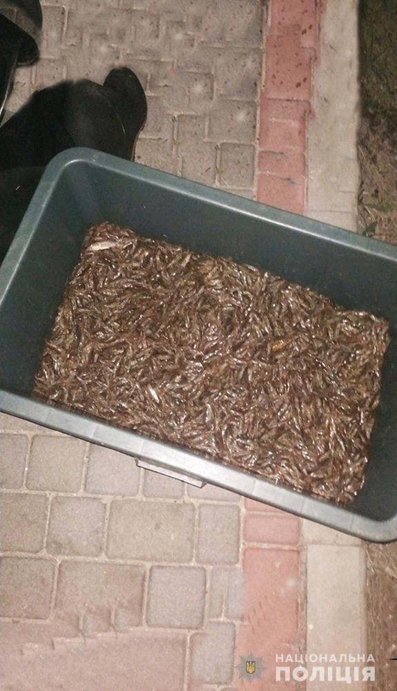 В Мелитопольском районе водная полиция изъяла у браконьера 15 кг креветки, фото-2